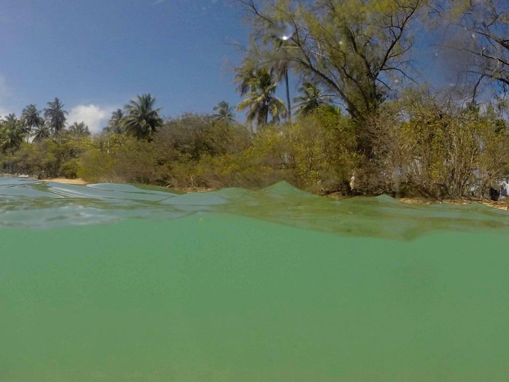 ilha-de-santo-aleixo