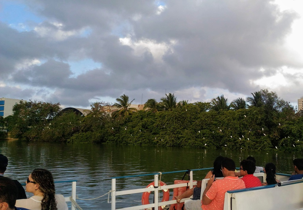 recife-antigo-rio-capibaribe-catamara